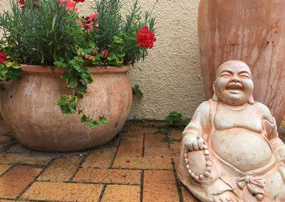 Buddha Lychen